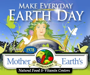 web_banner300x250earth