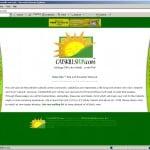tourism-portal-web-design