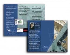 Web Services Brochure Design